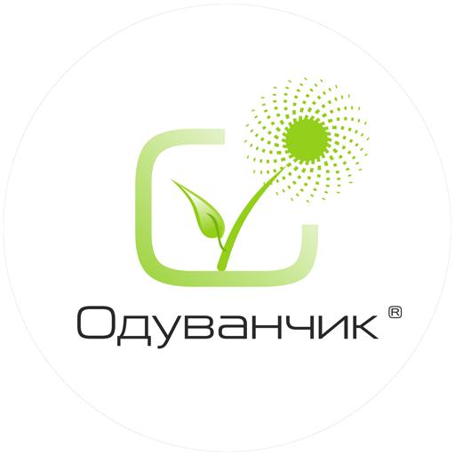 Компания Одуванчик